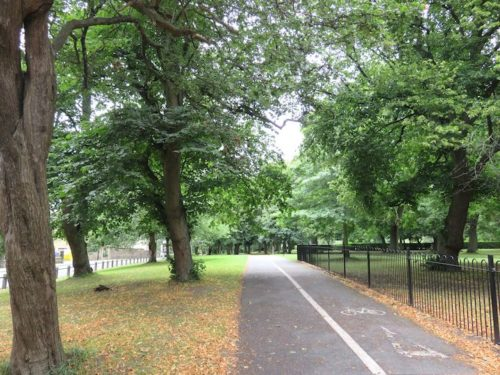 In the Woodhouse Moor