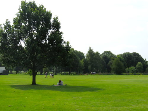 A Park beside River Avon