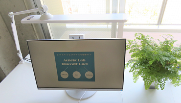 Aoneko Labの仕事部屋にあるパソコンと植物