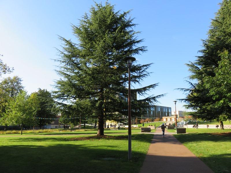 バーミンガム大学のキャンパス内のオープンスペース