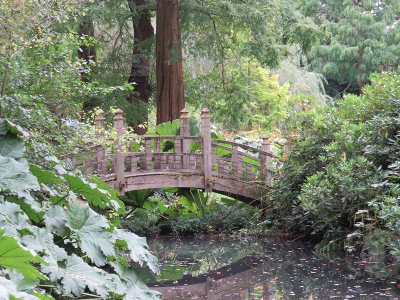 ウィンターボーン・ハウスガーデンの日本庭園