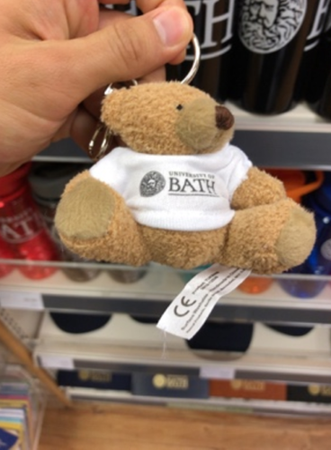 university of bath, item bear