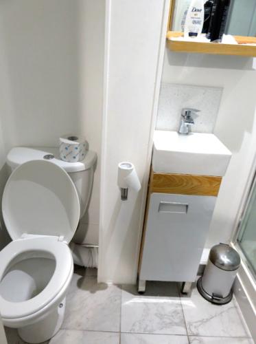 ルームシェアしているイギリスの家のトイレと洗面台