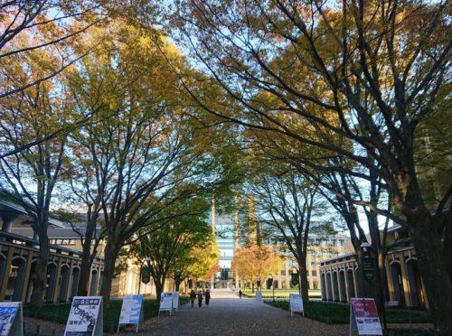 青山学院大学のキャンパス