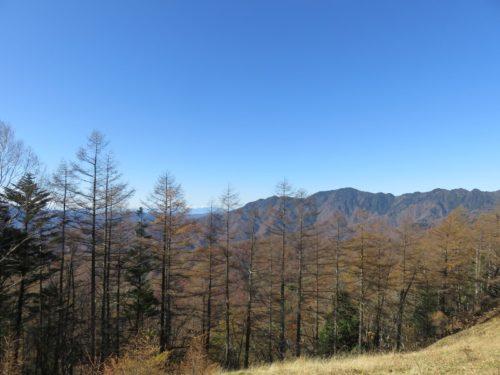 雲取山の登山中の眺め