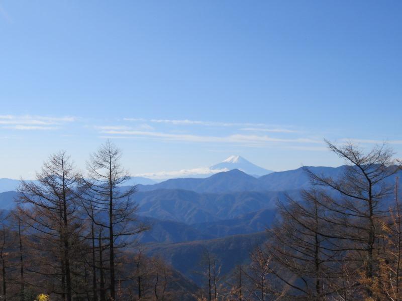 雲取山から富士山を見る