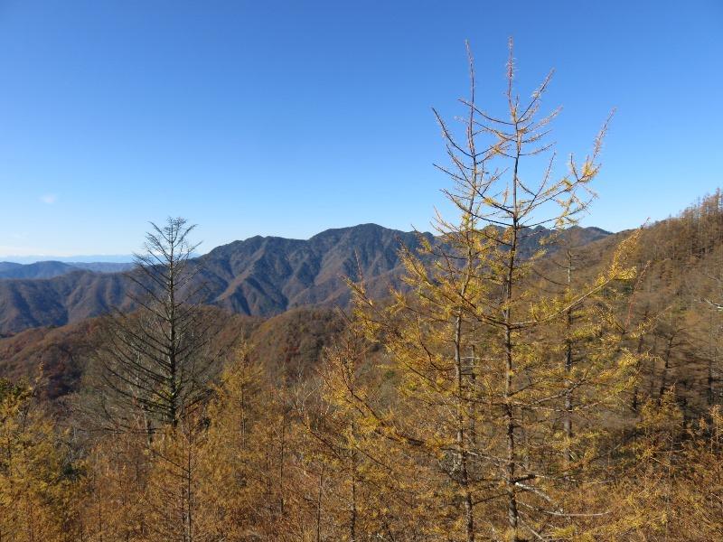 雲取山の紅葉と快晴の空