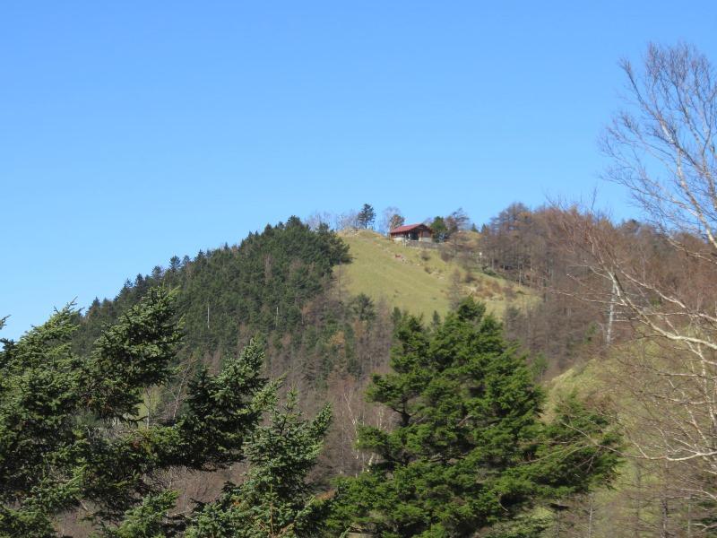 登山中に雲取山避難小屋が見える