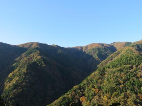 雲取山からの景色