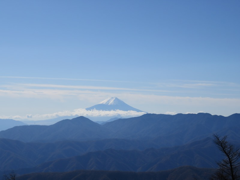雲取山から富士山を眺める