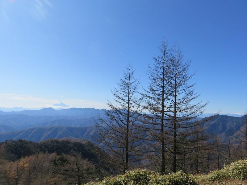 晴天の日の雲取山からの富士山