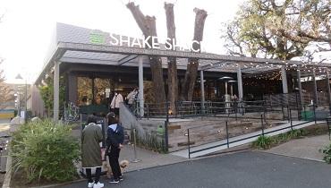 Shake Shack_cover
