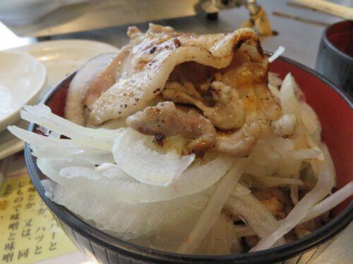 野菜とオニオン丼