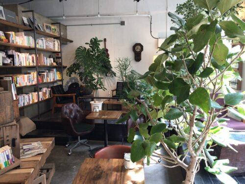 本と植物のあるブックカフェROUTE BOOKS
