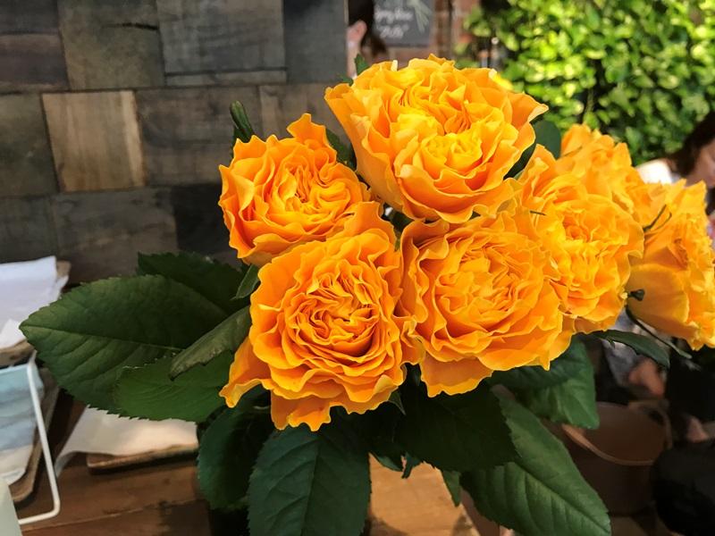 青山フラワーマーケット ティーハウス赤坂Bizタワー店の季節のお花