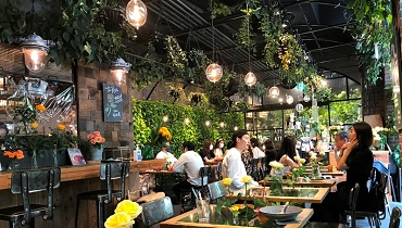 aoyama-flower-market_cover