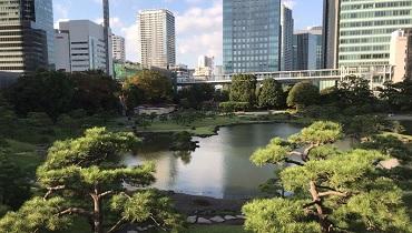 kyu-shiba-rikyu-garden_cover